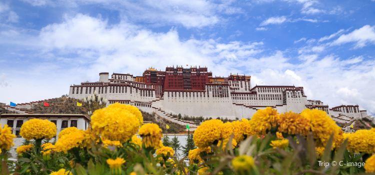 Potala Palace2