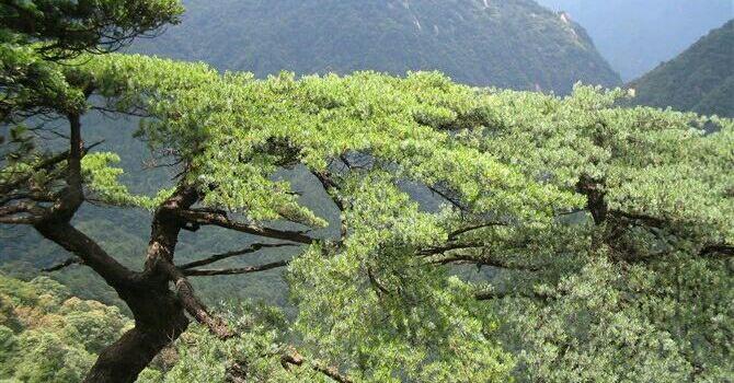 Xianling Mountain2