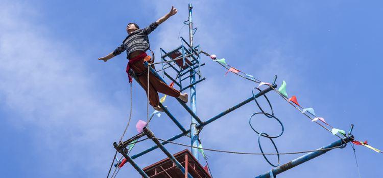 Wuqiao Acrobatics World2