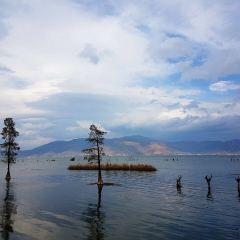 海舌生態公園用戶圖片