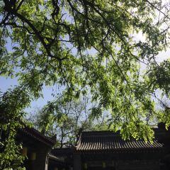 Xiangzi Temple User Photo