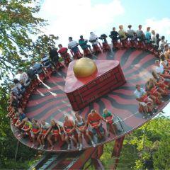 裡瑟本遊樂園用戶圖片
