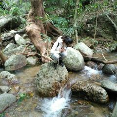 Qixianling (Seven Fairies Ridge) Hot Spring National Forest Park User Photo