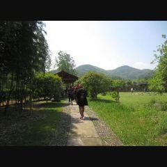 랑스진탄 여행 사진