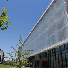 University of California - San Diego User Photo
