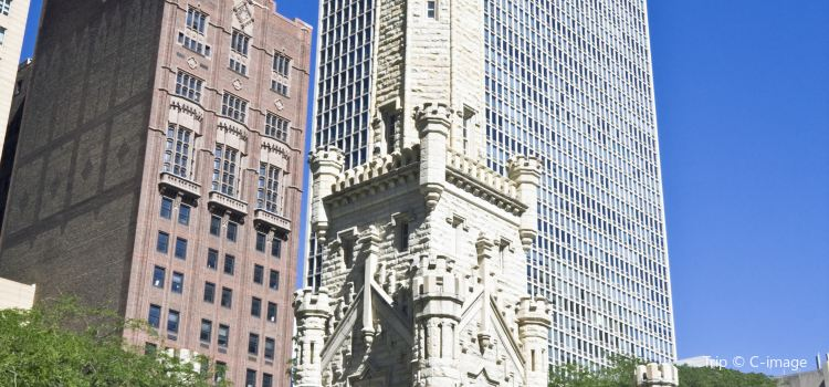 Chicago Water Tower2