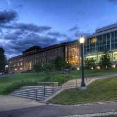 Cornell University User Photo