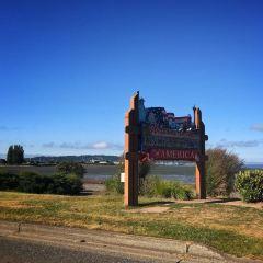 Peace Arch Provincial Park User Photo
