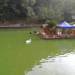Nanpingjiufeng Zoo User Photo