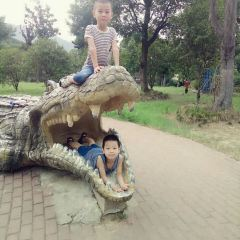 Wuxi Zoo,Taihu Lake Amusement Park User Photo