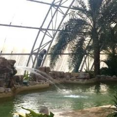 Pujiangyuan Hot Spring Forest Resort User Photo