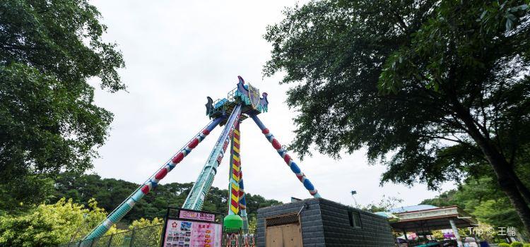 Nanning Sakura Valley Theme Park1