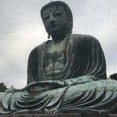 Kotokuin Great Buddha of Kamakura User Photo