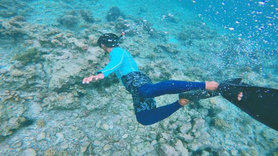 卡帕萊潛水