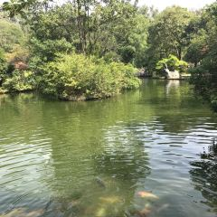 Seven Star Park User Photo