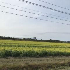 Koshimizu Genseikaen User Photo