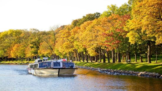 Royal Canal Cruise Tour
