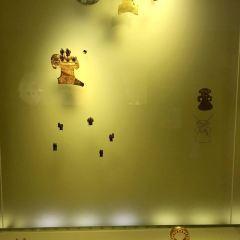 黃金博物館用戶圖片
