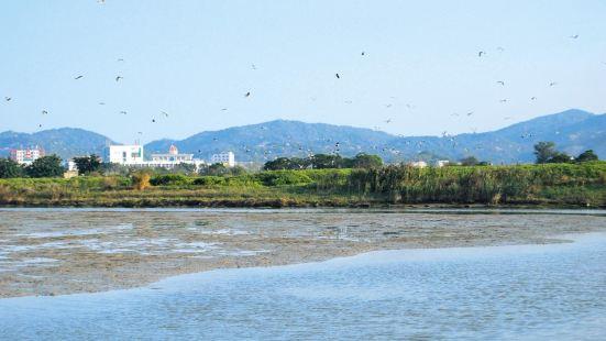 Su'aiwan Hongshulin Wetland