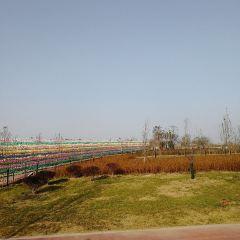 Chaohewan Ecological Garden User Photo