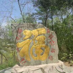 Zhonghua Temple User Photo