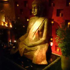 Tao夜店用戶圖片