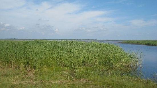 투무커시강