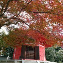 東福寺用戶圖片