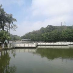 Xiqiao Mountain Scenic Area User Photo