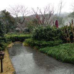 츠시 달봉산 온천 여행 사진