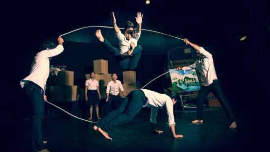 Phare-The Cambodian Circus