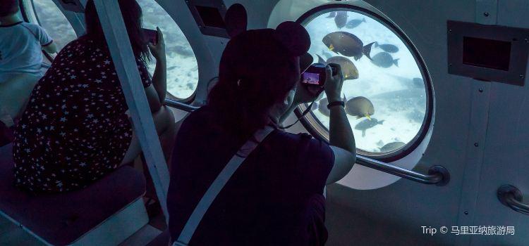 美人魚號觀光潛水艇1