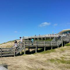 Healesville Sanctuary User Photo
