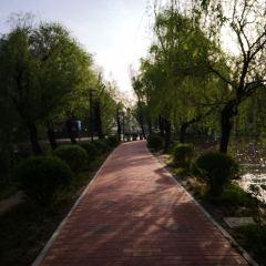 渭濱公園用戶圖片