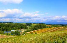 #北海道新富良野王子酒店#如何从新千岁机场