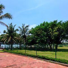Sunny Bay Hot Spring Resort User Photo