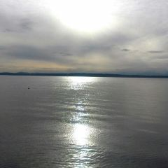 Golden Gardens Park User Photo