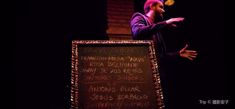 Museum of Flamenco Dance3