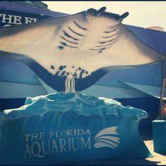 The Florida Aquarium User Photo