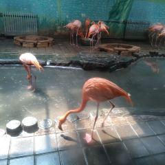 지난 동물원 여행 사진