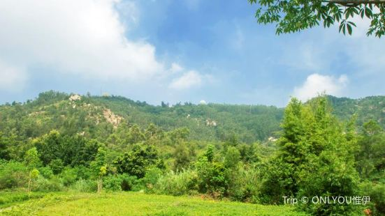 Luoshangshan Ecology Park
