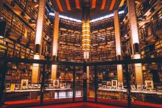 Robarts library-多伦多-纽约漫时光