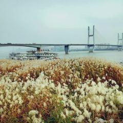 Hankou Riverside Reeds User Photo