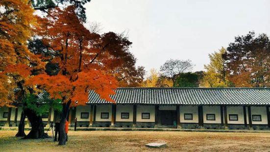 成均館大學