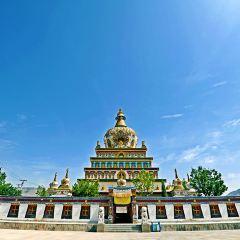 郭麻日寺用戶圖片