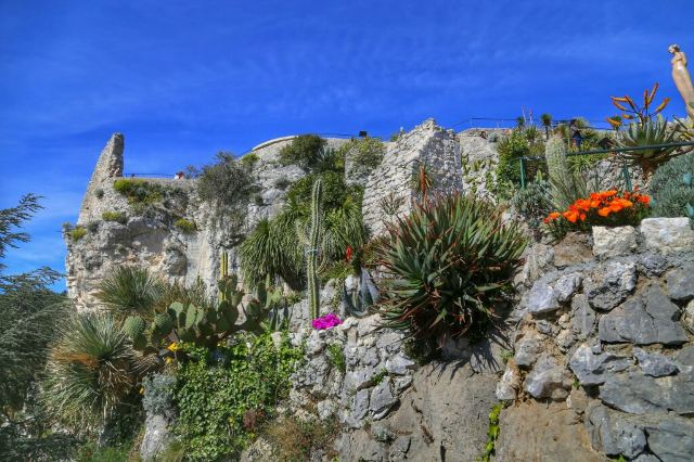 Jardin Exotique D Eze Attractions Alpes Maritimes Travel Review