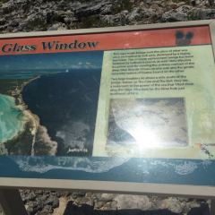 The Glass Window Bridge User Photo