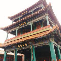 Changyinge User Photo
