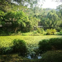 Fuyang Eco Park User Photo