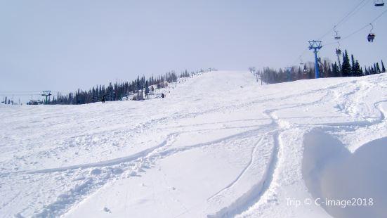 궁장령 온천 스키장